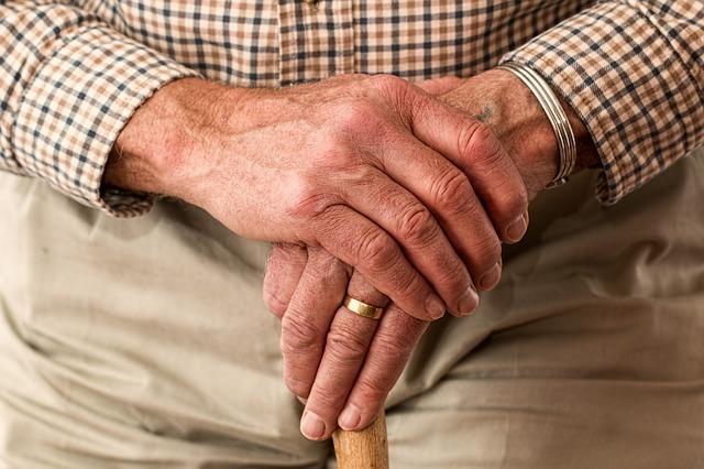 Holocaust Survivor Support Services